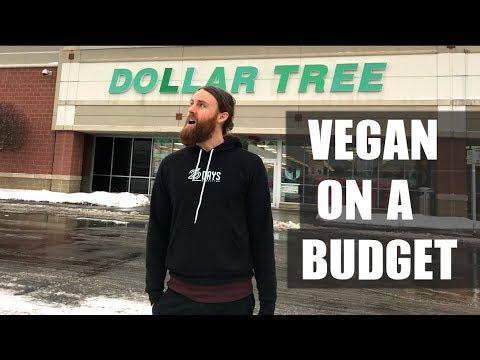 Xxx Mp4 What S VEGAN At Dollar Tree On A BUDGET 3gp Sex