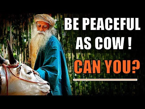 Sadhguru If you are loving and ecstatic you don't need a damn heaven