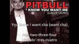 Pitbull - i know you want me LYRICS