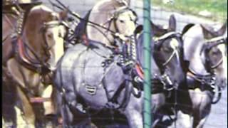 Danbury State Fair - Danbury CT - Sept 1973