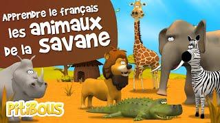 Apprendre les animaux de la savane - Les Pitibous