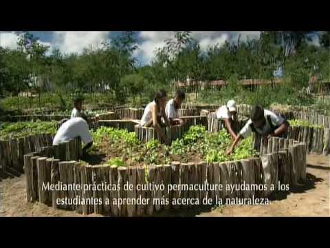 Nutrilite granjas organicas biodinamicas 2 2