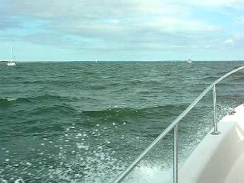 95 Pro-Line 231 WA Sea Test
