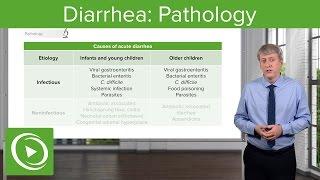 Diarrhea: Pathology, Types & Causes – Pediatric Gastroenterology | Lecturio