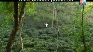 MUSTAFA-arkoto dine