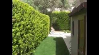 Müstakil Evin Çepeçevre Bahçesi ve Konumu