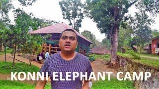 Konni Elephant Training Camp Video Blog Malayalam