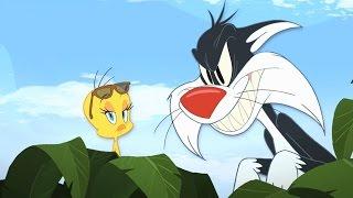 Tweety & Sylvester -
