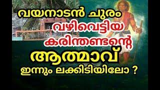 വയനാട് ചുരത്തിൽ അലയുന്ന ആത്മാവ് | wayanad churam | churulazhiyatha rahasyangal