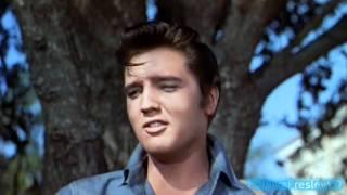 Elvis sings Gotta Lotta Living To Do (2K HD)