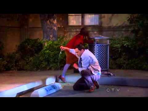 Amy showed Sheldon her bikini wax