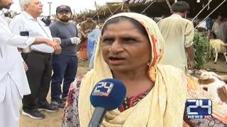24 Report: Women cattle dealers active in Karachi cattle markets