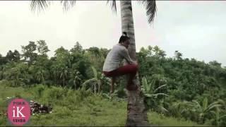Lion's Attack! video (IK VINES)