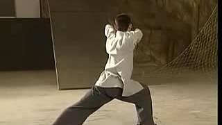 张龙 八极拳 Changlong Bajiquan