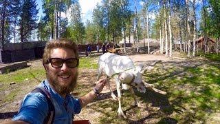 Operazione Giro Del Mondo video14: Finlandia da Nord a Sud zaino in spalla  [FULL HD]