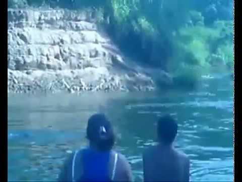 cobra engole a menina