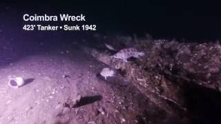 Seafood Safari TV @ The Coimbra shipwreck