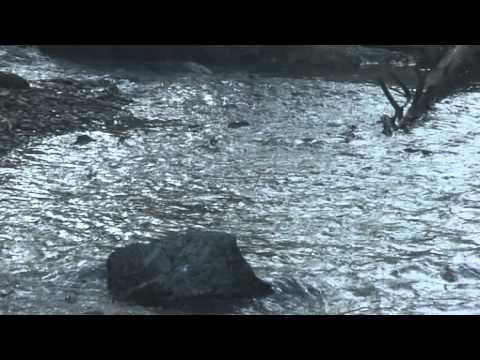 рыбалка в южно-сахалинске в сентябре