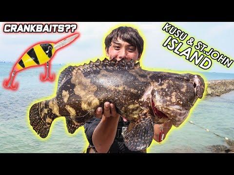 SHORE GROUPER fishing with CRANKBAITS! SINGAPORE ST JOHN & KUSU