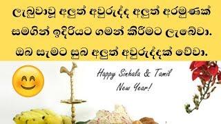 ඔබ සැමට සුබ අලුත් අවුරුද්දක් වේවා.-Happy New Year 2019 - Srilanka