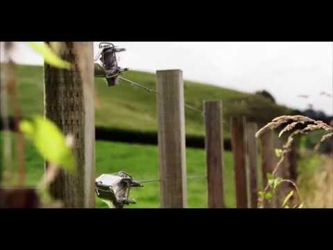 Xxx Mp4 New Zealand In 4K Ultra HD 3gp Sex