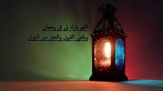 اجمل تلاوه هادئه وخاشعه للقارئ ابو بكر الشاطري🌼