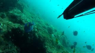 Mergulho em Jauá / Bahia - 03/03/2012