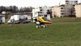 Turbine Trex RC Helicopter Flight Video