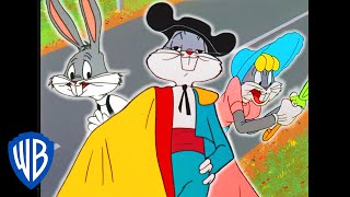 Looney Tunes | Was That Bugs Bunny? | Classic Cartoon Compilation | WB Kids