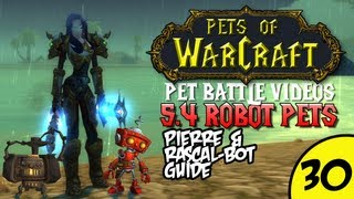 PetsOfWarCraft Video 30 - Pierre and Rascal-Bot Guide - World of Warcraft Vlog