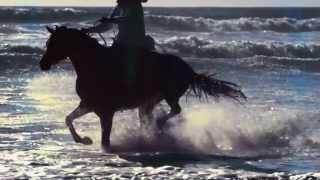 ANDRE RIEU - BOLERO - with DREAM HORSES