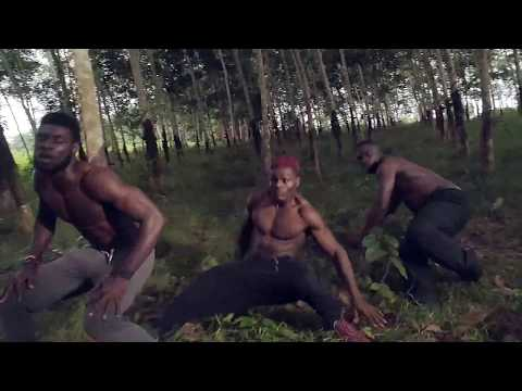 Debordo Leekunfa - Pikimin - clip officiel