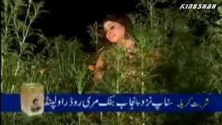 Ja Veriya Ve Ja Veriya *HD*1080p - Saira Arshad - Pakistani Love Song