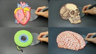 LEARN BODY PARTS WITH PANCAKES!! Heart Skull Eye and Brain AMAZING FOOD