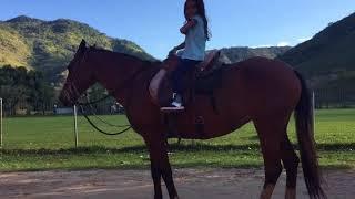 Aprendendo a cavalgar com a Tonha!