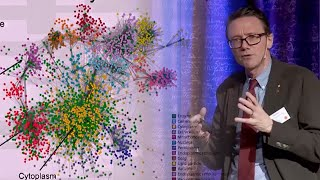 Jens B Nielsen: From yeast to human