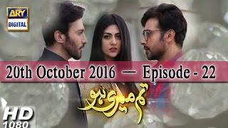 Tum Meri Ho Ep 22 - 20th October 2016 - ARY Digital Drama