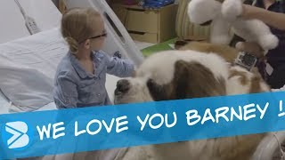 BARNEY a Therapy Dog in a Children's Hospital
