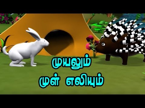Xxx Mp4 Rabbit And Hedgehog Animal Stories For Kids In Tamil Moral Stories Bedtime Stories 3gp Sex