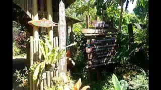 Green Paradise, Wisata Kota Pagaralam - Sumatera Selatan 🍃