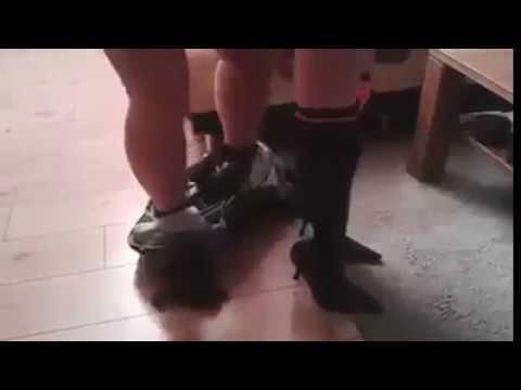 Xxx Mp4 Porn Video 21 BOOM 3gp Sex