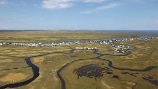 What makes a wetland a wetland?