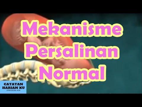 Mekanisme Persalinan Normal Keren Banget Wajib Nonton Mahasiswa Keperawatan