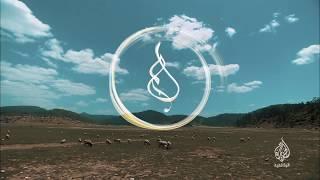 أفلام العيد (برومو) يوميا من 15 إلى 22 أغسطس