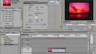 Adobe Premiere Pro 2.0 - Video Aula 01