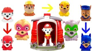 Best Learning Colors Video for Children  - Paw Patrol Turn into Super Pups Magic