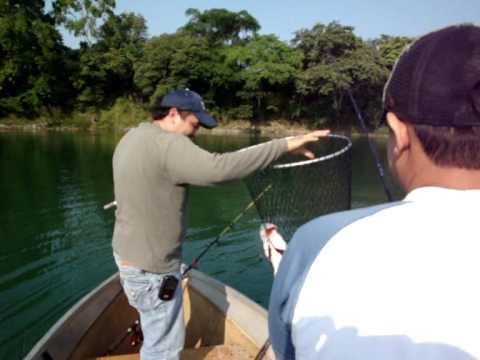 Pesca de Robalo en Alamo Ver. 2010.wmv
