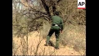EXCLUSIVE Vigilantes patrol border against immigrants