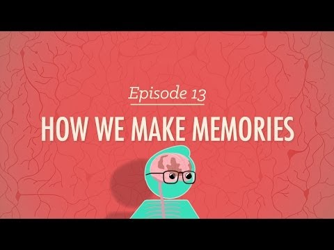 How We Make Memories - Crash Course Psychology #13