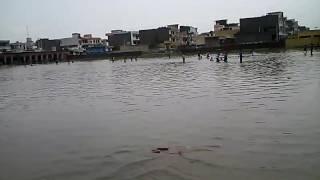 Ghs sehatpur faridabad ka school lawarish.students ka future bhagwan bharose(1)